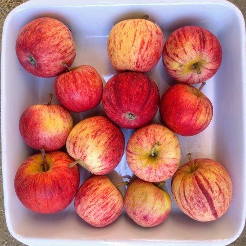 manzana roja orgánica